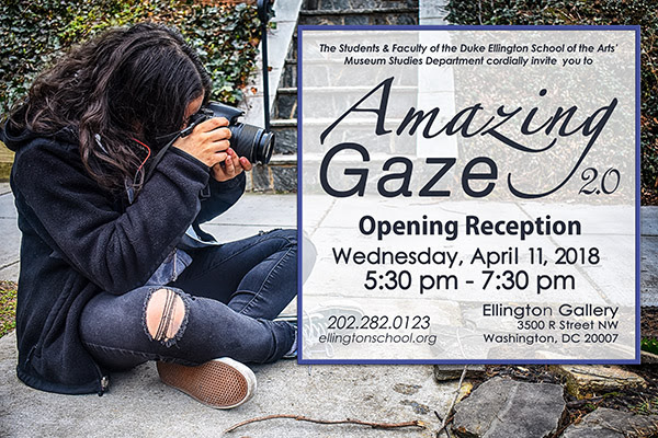 Amazing Gaze Museum Studies Flyer